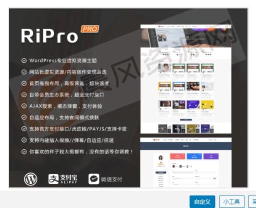 RiPro7.1最新明文版,免授权,完美修复各类BUG-全球首发-一车网